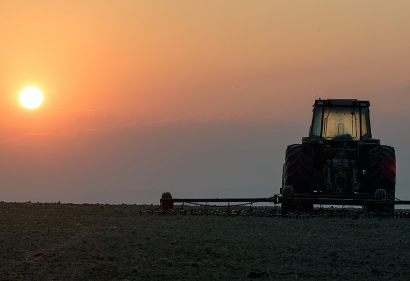 Tractor in Field with Horizon